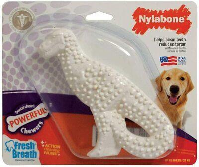 Nylabone Durable Dental Dinosaur Dog Chew, Regular, Assorted Shapes