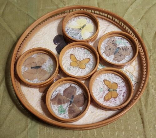 """Vintage 11"""" Round Drink Serving Tray with 6 Coasters BUTTERFLYS"""