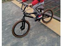 STOLEN BMX