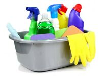 Reliable Local Domestic Cleaner NG4