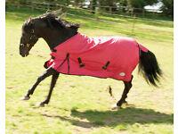 Medium Weight Outdoor Horse Rug - Various Sizes - NEW -