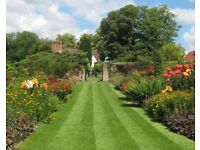 Cleaning gardens ,slubs , cut grass !!!!!