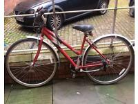 """Raleigh lady's bicycle 17"""""""
