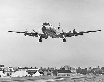 """Continental Airlines Vickers Viscount II ((8""""x10"""")) Print"""