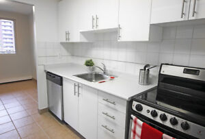 Spacious 2 Bed in Central Location - Close to Everything!