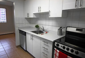 3 Bed Apt in St. Catharines - Renovated & Pet Friendly!
