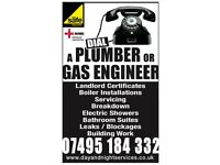 PLUMBING & HEATING / GAS SERVICES IN SOUTH LONDON - DAY & NIGHT - PLEASE CALL DARREN ON 07495184332