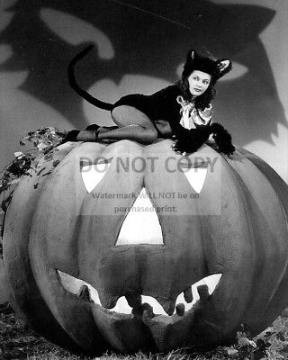 Halloween Pin Up (ACTRESS YVONNE De CARLO PIN-UP - 8X10 HALLOWEEN THEMED PUBLICITY PHOTO)