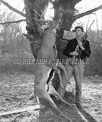 Antique Deer Hunting Repro 8X10 Photo Hunter With Savage Model 99 Rifle