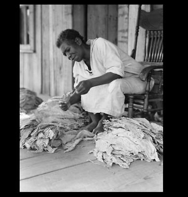 1938 Black Negro Sharecropper PHOTO Great Depression Tobacco Farmer GEORGIA