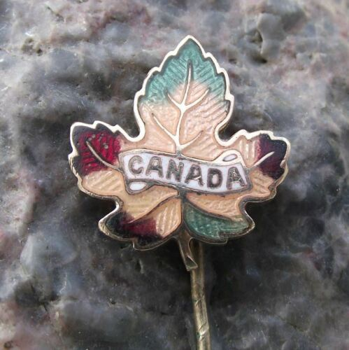 Antique Canadian Maple Leaf Fall Colours National Symbol Canada Flag Pin Badge