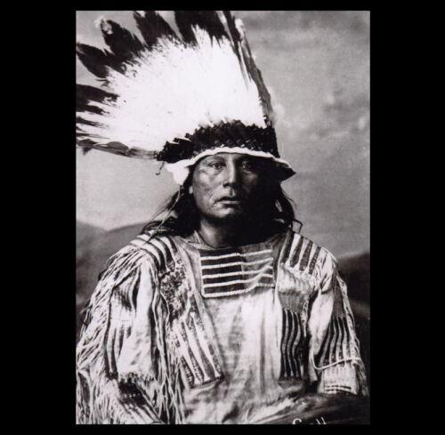 Chief Gall 1880 PHOTO Survivor of Custer's Last Stand, Headdress Lakota Indian