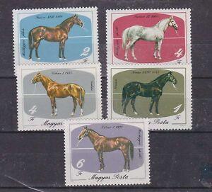 hungary 1985 horse,set MNH Sc 2932/6 g1502
