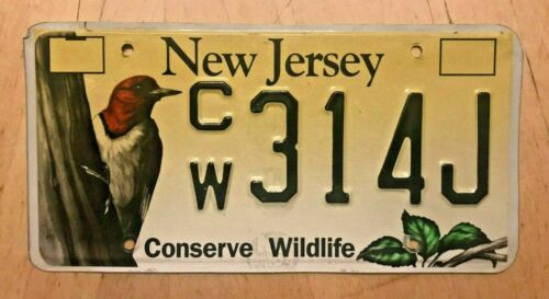 """NEW JERSEY CONSERVE WILDLIFE WOODPECKER GRAPHIC  LICENSE PLATE """" CW 314 J """" NJ"""