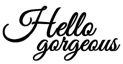 Hello Gorgeous Love Quote Mirror Vinyl Wall Art Decal Removable Color   Size