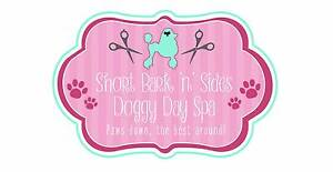 Short Bark 'n' Sides Doggy Day Spa Geelong West Geelong City Preview