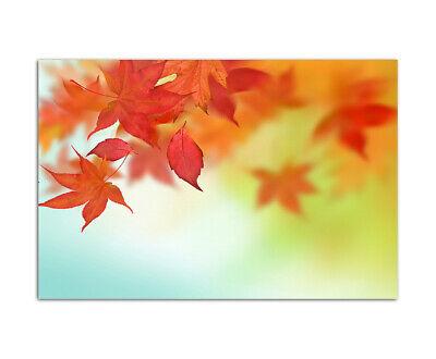 120x80cm Blätter fallen Herbst