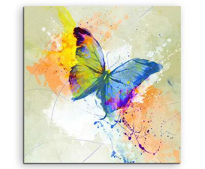 Schmetterling 60x60cm Aquarell Art Leinwandbild