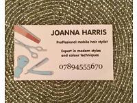 Mobile hairdresser / hair stylist in Ashford
