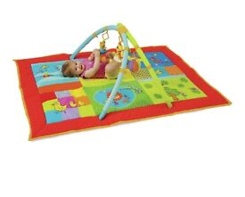 Taf toys 2 in 1 smart play gym