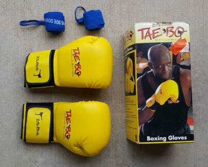 Taebo Boxing Gloves and Boxing Bag