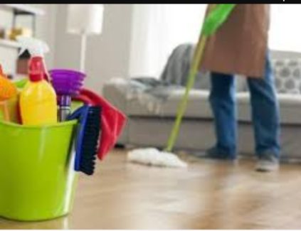 Wanted cleaning / housekeeping  Franklin Gungahlin Area Preview