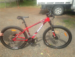 Giant mountain bike for sale, barely been used! South Toowoomba Toowoomba City Preview