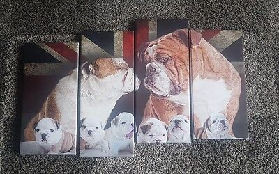 English, British Bulldog, Canvas ,Dog, pet, wall art , photo, print