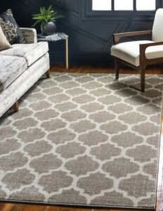 Selling a Brand New 5' x 8' Light Brown Trellis Rug