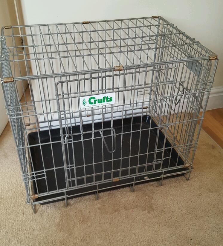Crufts dog crate in ringwood hampshire gumtree for Job lot dog crate