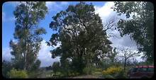 Want to Own Your 5 Acre Bush Block Perth Side of Toodyay? Busselton Busselton Area Preview