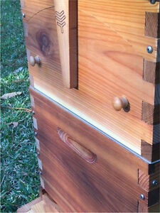 Flow Hive with bees!! Gorgeous luxury !!  #Flowhive Avalon Pittwater Area Preview
