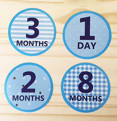 Monthly Baby Boy Stickers, Milestone Baby Stickers, Watch Me Grow (15 stickers)