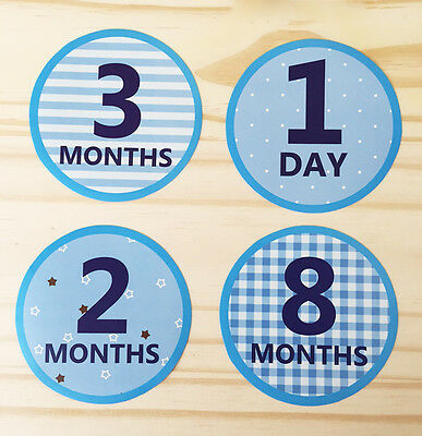 Monthly Baby Boy Stickers  Milestone Baby Stickers  Watch Me Grow  15 Stickers