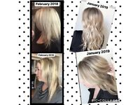 Work from home haircare and skincare business
