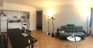 Spacious 3 1/2 apartment in the heart of downtown.