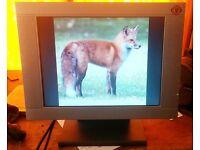 PC Monitor Flat Screen 15 inches Model EM 150 TFT Brilliant Bright Picture
