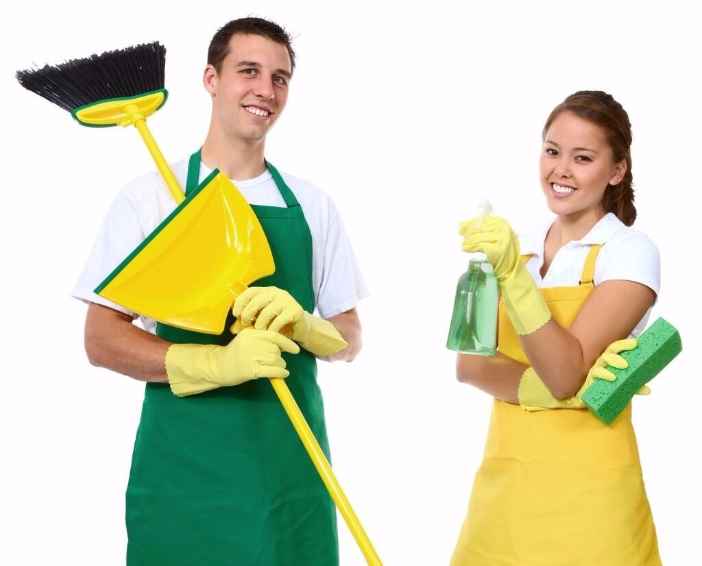 domestic cleaner housekeeper available in your area in gloucester