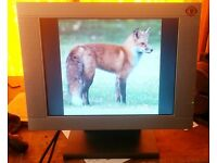 PC Monitor Flat Screen 15 inches Model EM 150 TFT Brilliant Bright Picture ***FREE!***