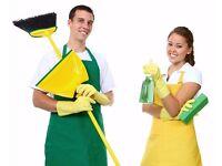 URGENT CLEANER REQUIRED