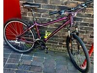✅Purple Limited edition upgraded 16 inch/21 speed front suspension Carrera axle LTD bicycle📲