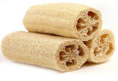 "Lot of 3 Natural 5"" Loofah Luffa Loofa Bath Shower Sponge Large Premium"