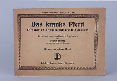 Wilhelm Böhland - Das kranke Pferd - Pestalozzi-Modelle Serie L. Nr. 69