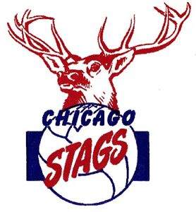 Chicago stags bulls old school nba basketball adult youth for Old school basketball t shirts