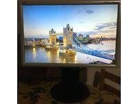 "LCD Monitor NEC MultiSync LCD2070WNX 20"" Widescreen"