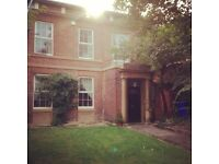 2 Double rooms to rent in Upperthorpe, £460/440pm inc. bills