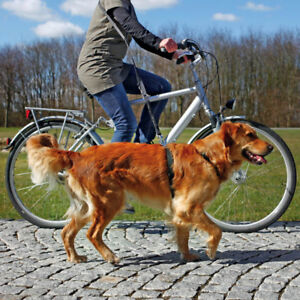 Trixie Dog Bike Bicycle Puppy Walking Jogging Shock Absorber Leash Lead 1282