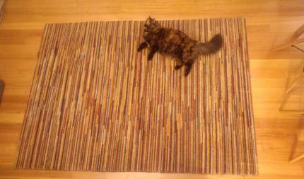 Large pure wool stripey IKEA rug