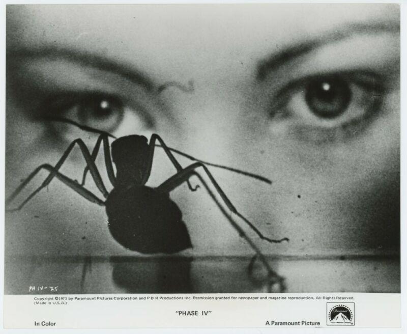 LYNNE FREDERICK original movie photo 1974 PHASE IV