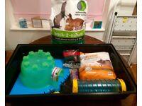 Pet Rat Starter Kit - large Savic rat Cage, food, bedding, igloo, Sputnik, treats